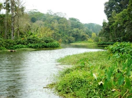 Harithavanam Farm House: som epart of the river were it is bit deep
