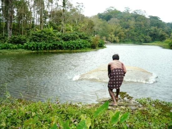 Harithavanam Farm House: Fishing