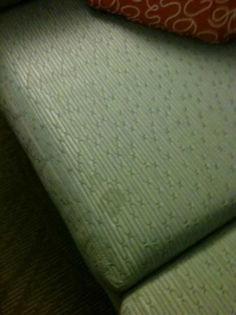 SpringHill Suites by Marriott Orlando at SeaWorld: Stained couch