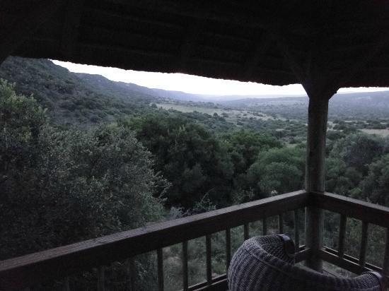 Amakhala Game Reserve: Ausblick Terasse vom Zimmer