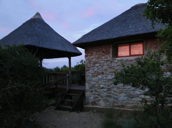 Amakhala Game Reserve: Zimmer/Suite