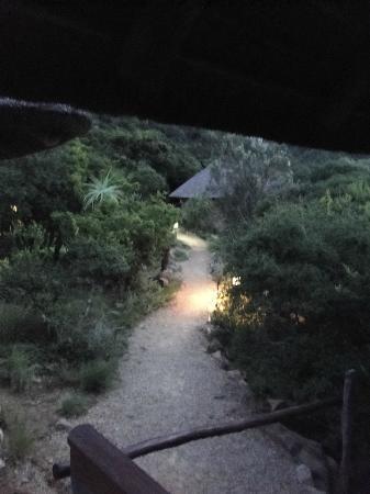 Amakhala Game Reserve: Weg von der Suite (um 6 Uhr morgens)