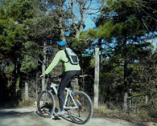 Alt Camp, إسبانيا: Senderismo y bicicleta