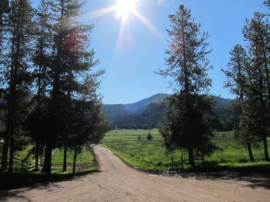 McGinnis Meadows Cattle and Guest Ranch: The view from the Highline