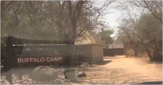 Kapama Buffalo Camp : The arrival