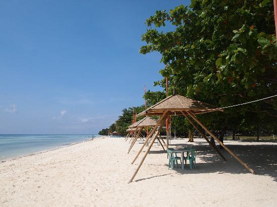 Blue Star Dive Resort Beach Of Anda Bohol