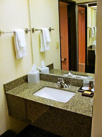 Huntsville Marriott at the Space & Rocket Center: Separate vanity area outside bathroom