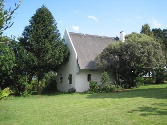 Intaka Lodge: In the garden