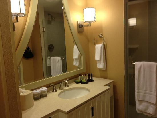 Embassy Suites by Hilton Houston Downtown: lovely bathroom with shower