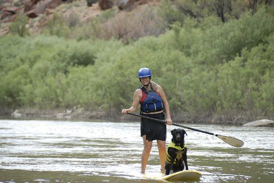 4 Corners Whitewater / Telluride : Stand-Up Paddling in Telluride