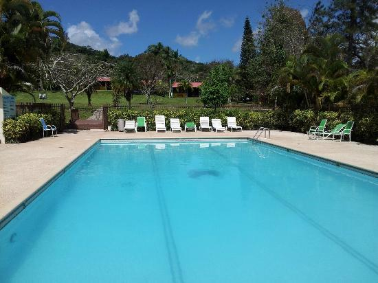 Adjuntas, Porto Riko: pool