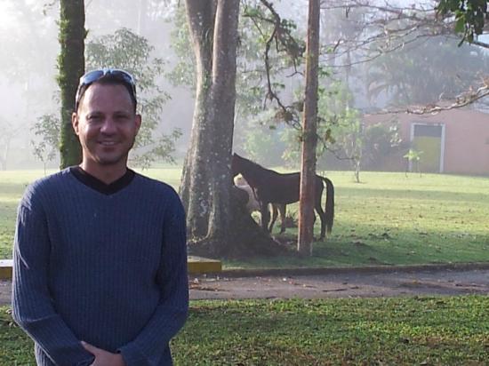 Parador Villas Sotomayor: vista desde la habitacion