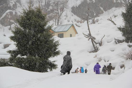 Parvati Valley : On way to malana