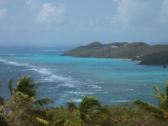 Canouan: Reef view
