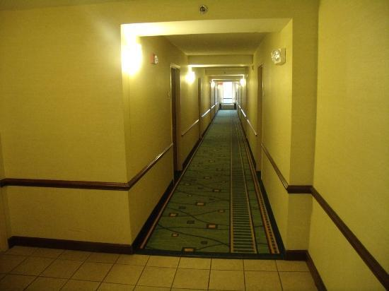 SpringHill Suites Peoria Westlake: Hallway to our room