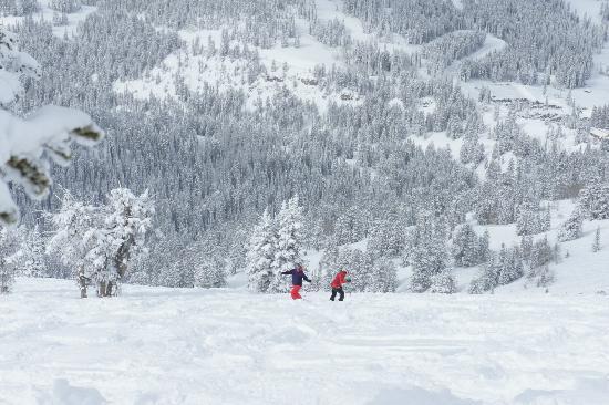 Grand Targhee Ski Resort: Vast snowy playground for our pleasure!