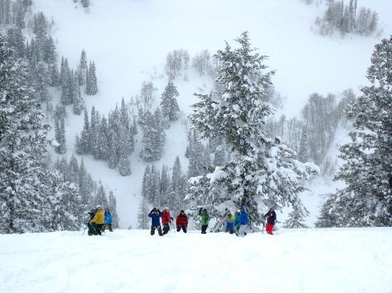 Grand Targhee Ski Resort: Our cat skiing group impatiently waiting for me to take a photo