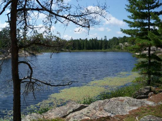 Gurd Lake Picture Of Grundy Lake Provincial Park Britt Tripadvisor Get all the lyrics to songs by gurd and join the genius community of music scholars to learn the meaning behind the lyrics. picture of grundy lake provincial park