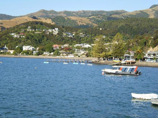 High Country Explorer Tours: Ankora harbor