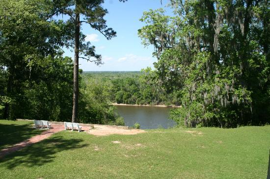 Torreya State Park: bordering the Apalachicola River