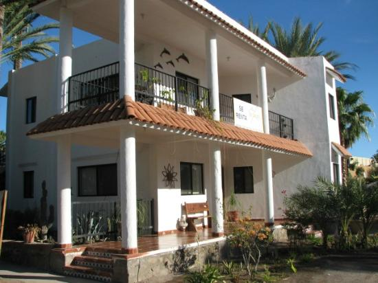 Villas Santo Nino : Two Great Apartments on lovely grounds in the heart of Loreto, Baja