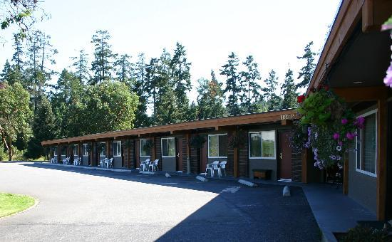 Arbutus Grove Motel: Maximum comfort and value. You will not be disappointed. Great rates.