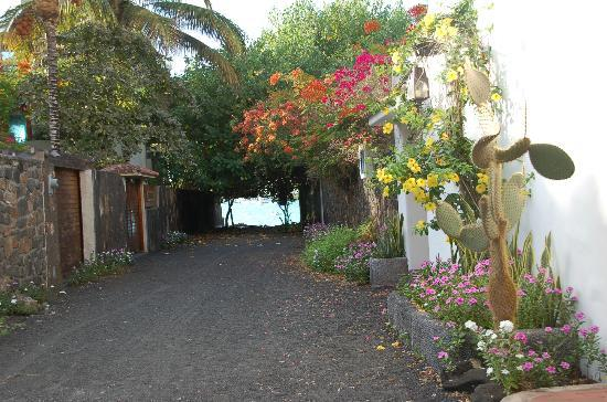 Hotel Mainao: Walkway to town