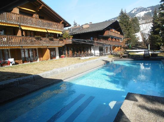 Hotel Alpine Lodge Gstaad - Saanen: Pool/Beach area