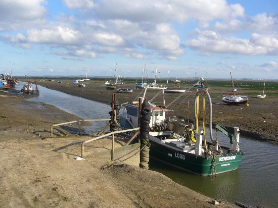 Old Leigh: The Thames is tidal........low tide....