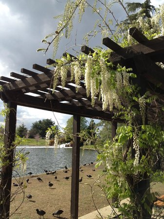 Lake Balboa Park