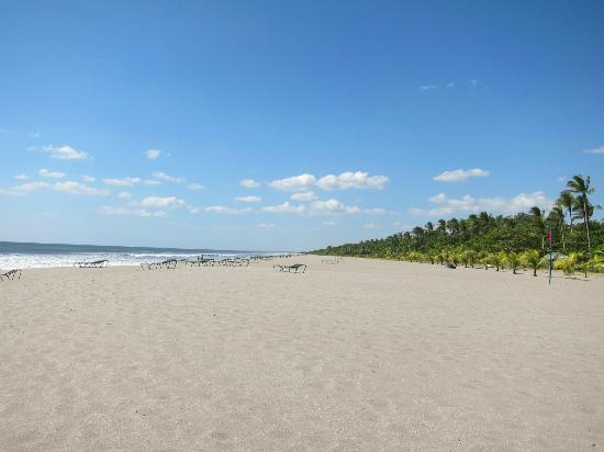 Barcelo Montelimar Beach: Only downside was the absence of umbrellas - HOT!!