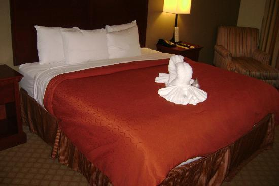 Country Inn & Suites By Carlson, Tampa East: Very comfortable bedding