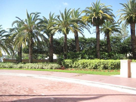 Hotel & Conference Center, BW Premier Collection: Hotel Grounds