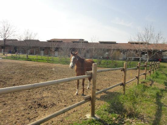 写真Agriturismo le Cascatelle San Nicomede枚