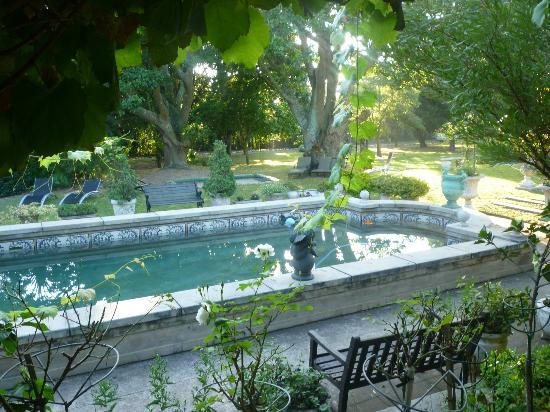 Forest Hall Guest House: Pool area and garden