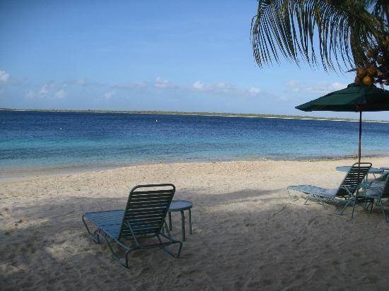 Harbour Village Beach Club: Pristine beach!