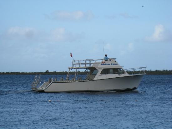 Harbour Village Beach Club: Resort boat
