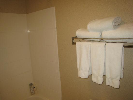 Holiday Inn Express Las Vegas South : Toallero (flojo)