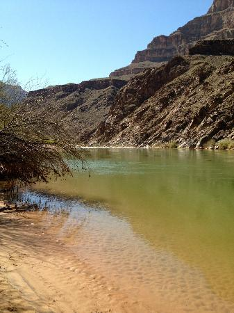 Hualapai Lodge : Colorado River at the bottom of the Grand Canyon
