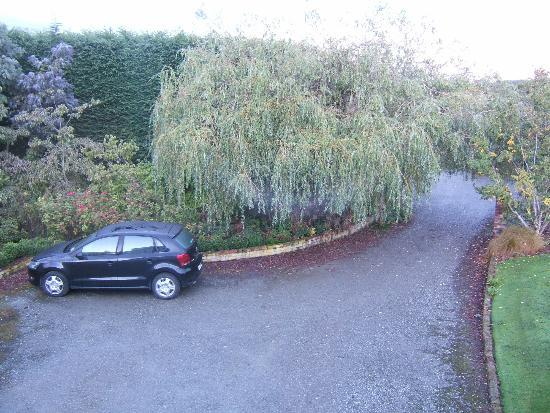 Tudor Park Country Stay : this is the drive-way
