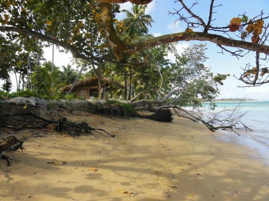 Grand Bahia Principe El Portillo : plage vers Las  Terranas