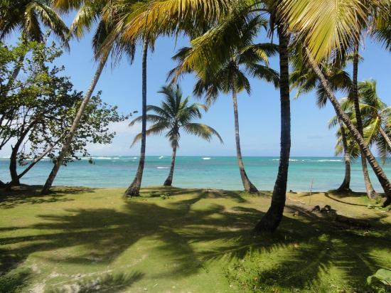Grand Bahia Principe El Portillo : décor de carte postale