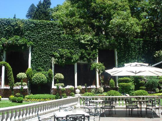 Emperador Hotel Buenos Aires: Garden Terrace