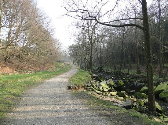 Scaife Hall Farm : Walk To Thuscross Reservoir