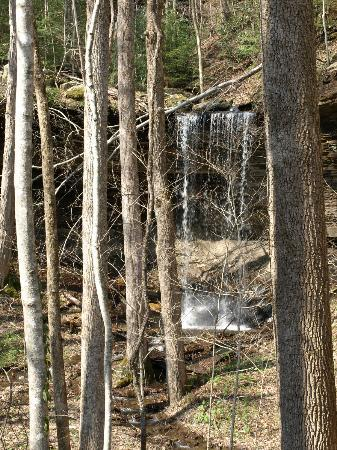 Big South Fork National River & Recreation Area: Waterfall along the O&W trail (4x4 access).