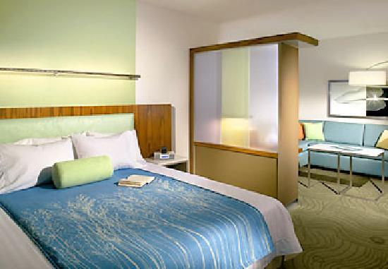 SpringHill Suites Philadelphia Valley Forge/King of Prussia: King Suite