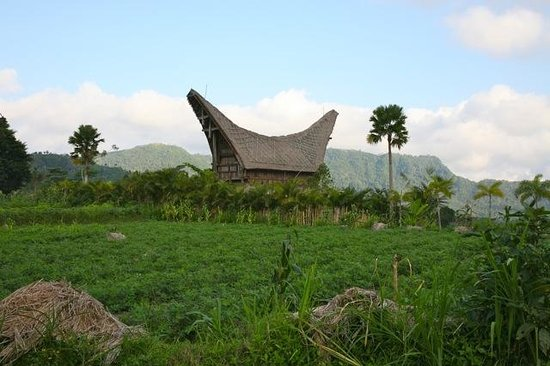 Things To Do in Sidemen Tour and Trekking, Restaurants in Sidemen Tour and Trekking