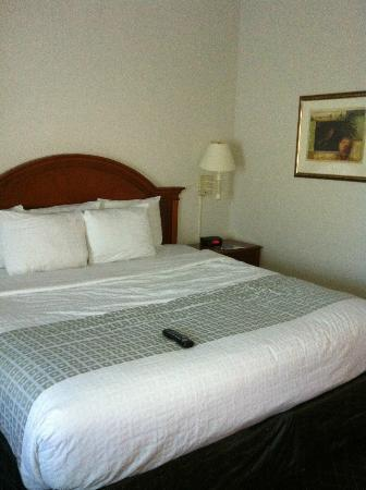 La Quinta Inn & Suites Corpus Christi Northwest: Comfy bed