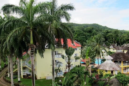 Mystic Ridge Resort: Property