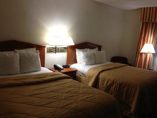 Comfort Inn Nashville/White Bridge: the beds